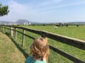 blackford-hill